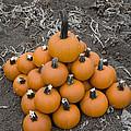 Bowling For Pumpkins by David Millenheft