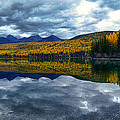 Bowman Lake Quietude by Renee Sullivan
