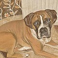 Boxer Dog George by Faye Symons