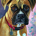 Boxer Dog Portrait by Lyn Cook