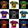 Boxer Mix Dog Art - 8173 - V1 - M by James Ahn