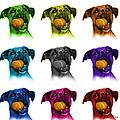 Boxer Mix Dog Art - 8173 - Wb - M by James Ahn