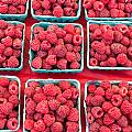 Boxes Of Fresh Red Raspberries by John Trax