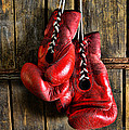 Boxing Gloves - Now Retired by Paul Ward