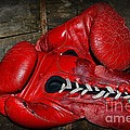 Boxing Gloves by Paul Ward