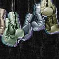 Boxing Gloves by Tony Rubino