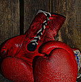 Boxing Gloves Worn Out by Paul Ward