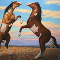 Boxing Horses by James W Johnson