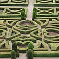 Boxwood Garden - Chateau Villandry by Christiane Schulze Art And Photography