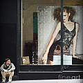 Boy Meets Girl by Miriam Danar
