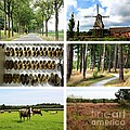 Brabant Collage by Carol Groenen