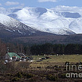 Braeriach From Whitewell by Phil Banks