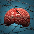 Brain And Barbed Wire by Ktsdesign