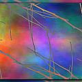 Branches In The Mist 15 by Tim Allen