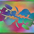 Branches In The Mist 37 by Tim Allen