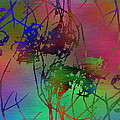 Branches In The Mist 47 by Tim Allen