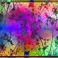 Branches In The Mist 5 by Tim Allen