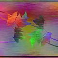 Branches In The Mist 55 by Tim Allen