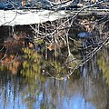 A Wisconsin River Scene by Karen Majkrzak