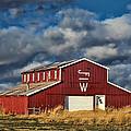 Branded Barn by Sylvia Thornton