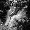 Brandywine Falls Black And White by Clint Buhler