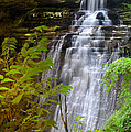 Brandywine Falls Of Cuyahoga Valley National Park Waterfall Water Fall by Jon Holiday