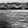 brash sea ice forming in front of glacier wall face port lockroy Antarctica by Joe Fox