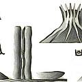 Brasilia Landmarks by Michal Boubin