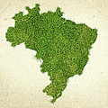 Brazil Grass Map by Aged Pixel