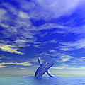 Breaching Whale by Lars Lentz