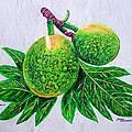 Bread Fruit by Jeanne Humphreys