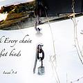 Break Every Chain by Debbie Nobile