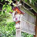 Breakfast At The Birdhouse by Anne Mott