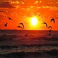 Breakfast By The Seaside by Ron  Tackett