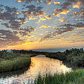 Breaking Dawn Along The Bayou by Joan McCool