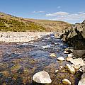 Breamish River by David Head