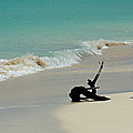 Breathtaking Barbuda by Kimberly Perry