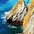 Breathtaking Free Fall by Karen Wiles