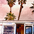 Breezy Day Palm Springs by William Dey