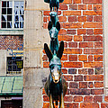Bremen Musicians Statue by Pati Photography