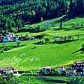 Brenner Pass Greenery by Eric Tressler