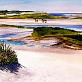 Brewster Ebb Tide by Karol Wyckoff