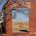 Brick Entry 1 by Ashley M Conger