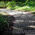 Brick Pathway  by Lynn Griffin