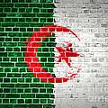 Brick Wall Algeria by Antony McAulay
