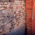 Brick Wall by Fran Riley