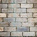 Brick Wall by Tim Hester