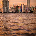 Brickell Sunset by Dan Vidal