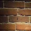 Bricks by Alys Caviness-Gober