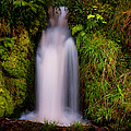 Bridal Dress. Waterfall At Benmore Botanical Garden. Nature Of Scotland by Jenny Rainbow